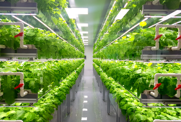 Farmland and agriculture technology crowdfunding platform Harvest Returns is partnering with Agritecture on a new urban farming initiative.